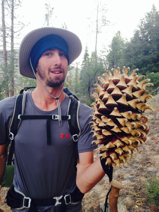 Woody and the heaviest pine cone in the world.
