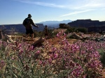 A weekend with friends on the White Rim Trail