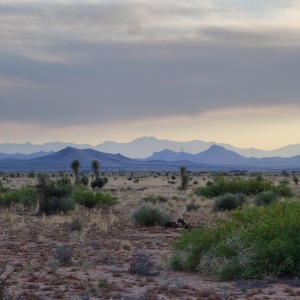One of my favorite Landscapes, in the boot heel of New Mexico.