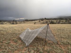 Q Twinn in New Mexico