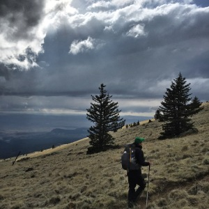 Lord Badger hikes up Mount Taylor as the storm clouds rumble